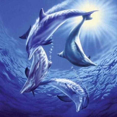 Puzzle Delfíni - 1000 dílků