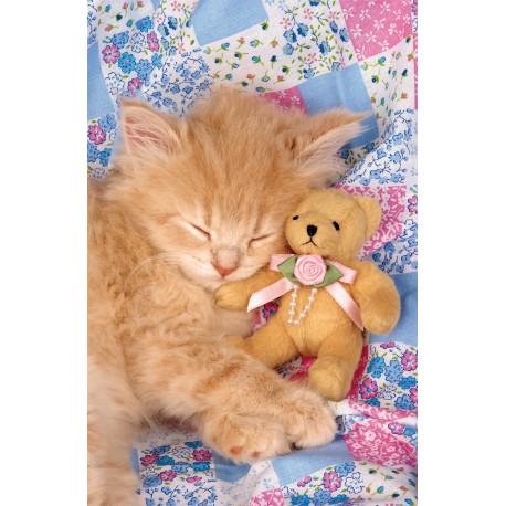 Puzzle Koťátko a medvídek - 1000 dílků