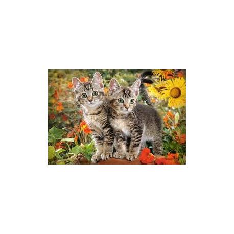 Puzzle Kočičí přátelé - 1500 dílků