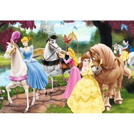Puzzle Kouzelné princezny - 2x 24 dílků