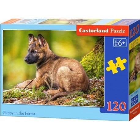 Puzzle Štěně v lese - 120 dílků