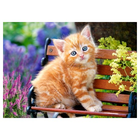 Puzzle - Kočička na lavičce, 180 dílků